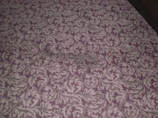 Quality Inn & Suites Maison St. Charles: Huge Black Stain on Carpet