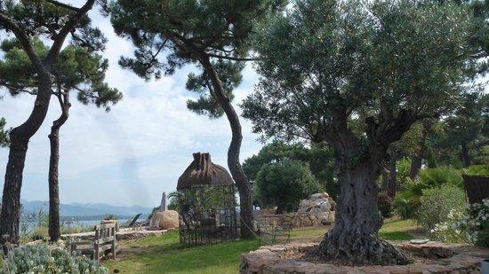 Maranatha Porto-Vecchio : Jardin