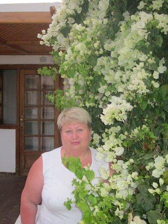 Dessole Seti Sharm Resort: У номера