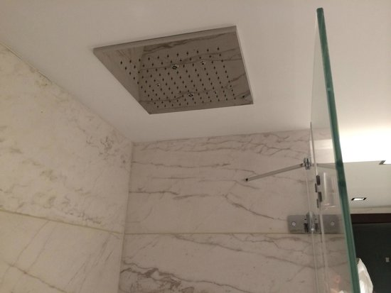 Amathus Beach Hotel Limassol : Amazing rain shower with seperate hand held power head