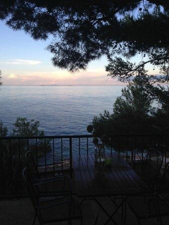Villa pod borom: View