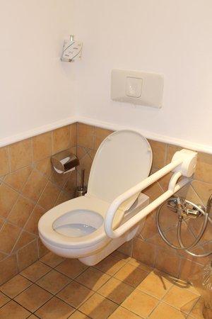 Dioscuri Bay Palace Hotel : Chambre 438 WC Handi