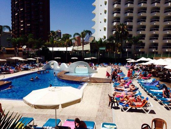 Hotel Rosamar : Poolside