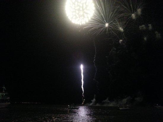 Louie's Backyard: Fireworks
