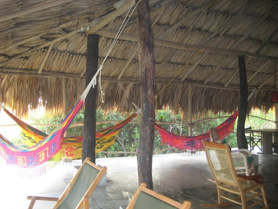 Finca Barlovento Cabana & Maloka : Salle commune (salon, salle manger, etc)