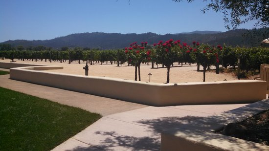 Robert Mondavi Winery: Grounds
