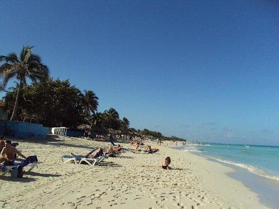 Hotel Palma Real: zona de playa