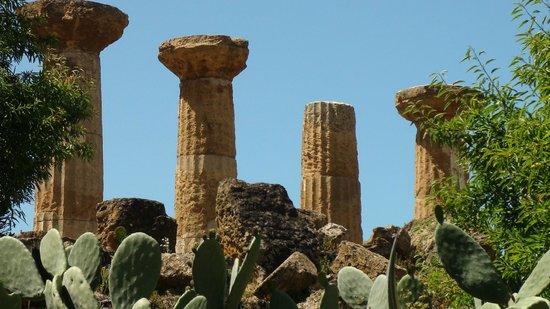 Valley of the Temples (Valle dei Templi): templi