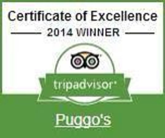 Puggo's: we  did it again' 2014' the best!!!!