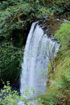 Columbia River Gorge National Scenic Area : Columbia Gorge