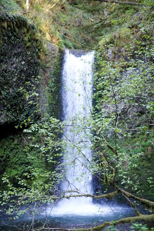 Columbia River Gorge National Scenic Area: Columbia Gorge