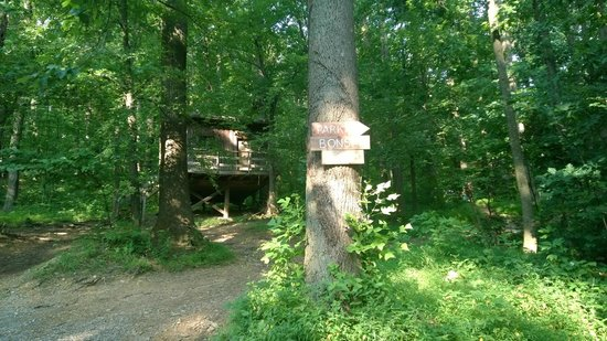 Maple Tree Campground: cottage