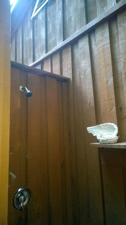 Maple Tree Campground: open ceiling showers