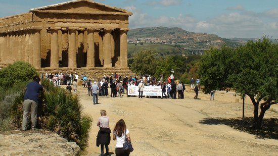 Valley of the Temples (Valle dei Templi): gruppo numeroso