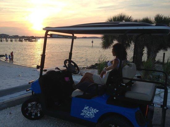 Endless Summer Cart Rentals