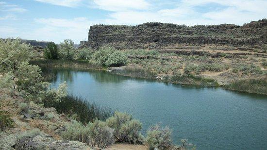 Shoshone Falls : Каменные берега