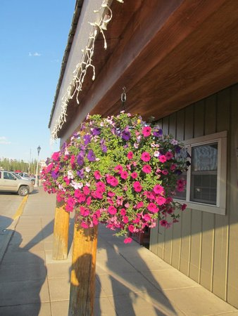 Alpine Motel: beautiful hanging baskets