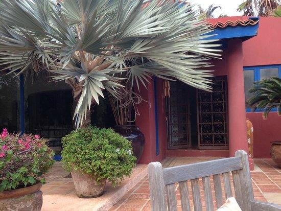 La Maison Aruba: Pool area