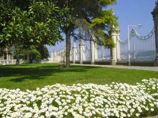 Palacio de Dolmabahçe: Stroll Through the Gardens