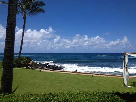 Beach House Restaurant : Our lunchtime view.