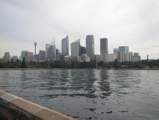 Le parc du Domaine : View of Sydney Skyline
