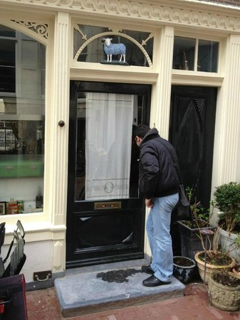 The Blue Sheep Bed & Breakfast Amsterdam: All'arrivo... la Pecora Blu...