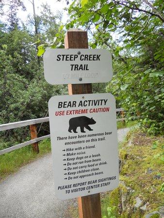 Mendenhall Glacier Visitor Center: Bears