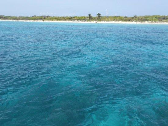 Tropical Princess Beach Resort & Spa : catalina