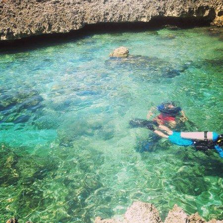 Grand Cayman Marriott Beach Resort: Scuba Diving