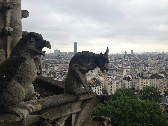 Tours de la Cathedrale Notre-Dame : Gárgulas