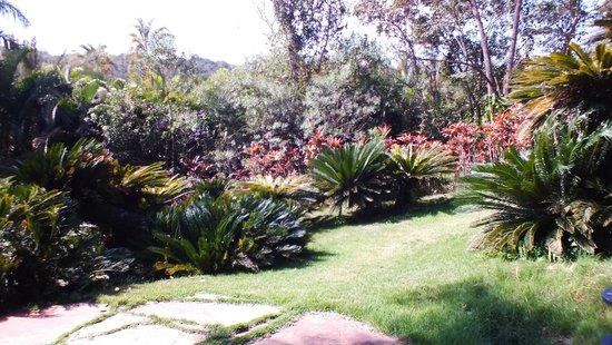 Inhotim : jardins encantadores