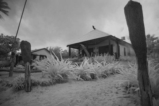 Namuka Bay Lagoon Resort: Bures a few steps from the beach