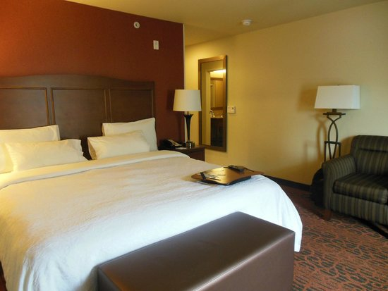 Hampton Inn and Suites Seattle-Airport/28th Ave : This was our guest room with queen bed