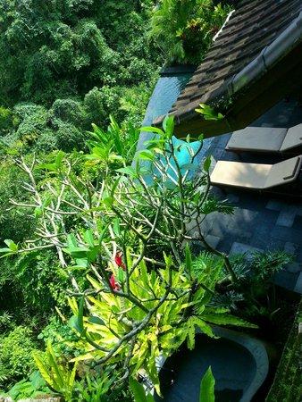 Bidadari Private Villas & Retreat : nice cool pool