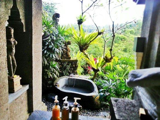 Bidadari Private Villas & Retreat: 泡澡小心虫噢