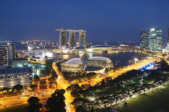 Swissotel The Stamford Singapore: 夜景