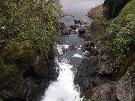 Inversnaid Hotel : Waterfall