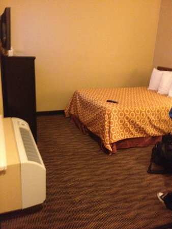 Quality Inn San Diego Downtown North: Bed and TV - at least the cable was working!
