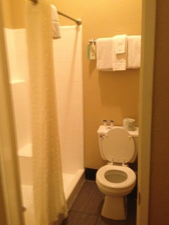 Quality Inn San Diego Downtown North: Toilet area was clean and did not find any mold