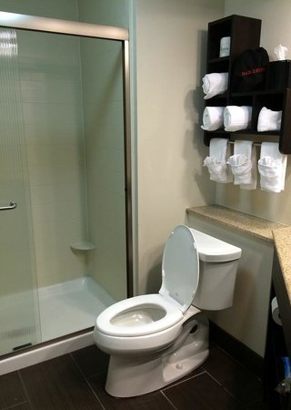 Hampton Inn & Suites New Orleans Downtown (French Quarter Area): Nice roomy bathroom