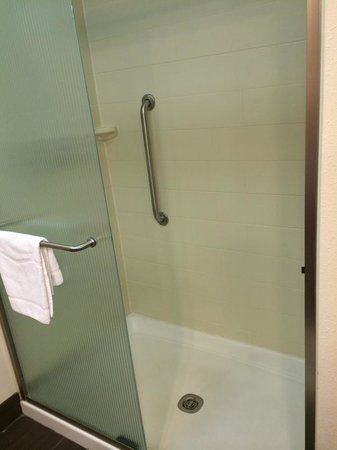 Hampton Inn & Suites New Orleans Downtown (French Quarter Area) : Shower, but no tub