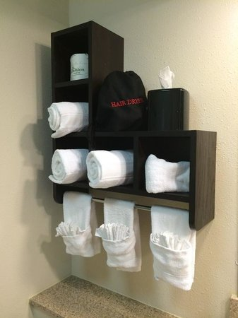 Hampton Inn & Suites New Orleans Downtown (French Quarter Area) : Fresh linen each day... very clean