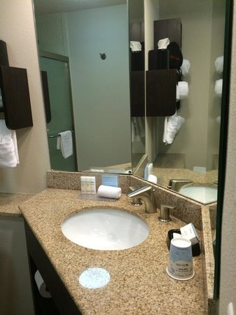 Hampton Inn & Suites New Orleans Downtown (French Quarter Area) : Nice bathroom