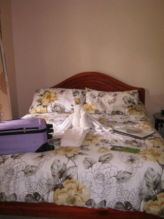 Hotel La Rosa de America: Room 15