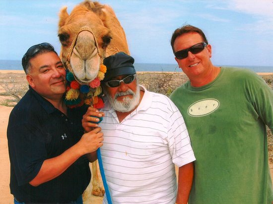 Outback & Camel Safari: Camels in Cabo
