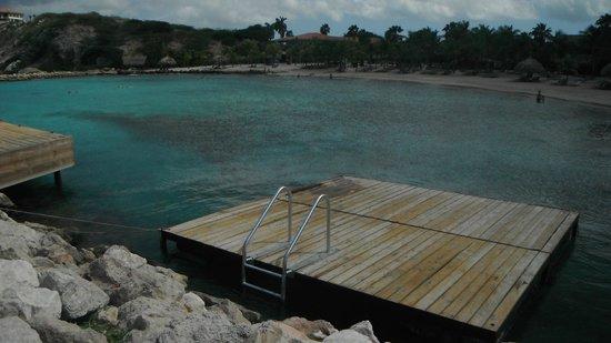 Blue Bay Curacao: Praia na frente do apartamento