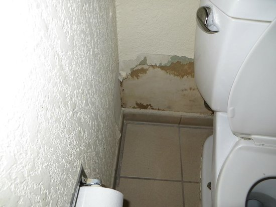 Severe Water Damage In The Bathroom Picture Of HomeGate Studios - Bathroom water damage