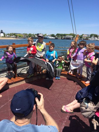 Pirate Adventures Hyannis : Pirate adventure!