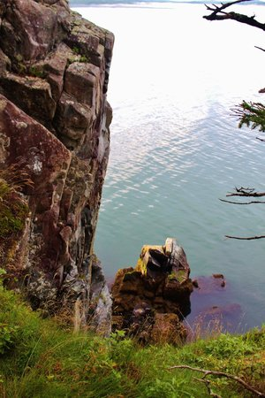 West Quoddy Head Light : One of the views from the .5 mile hike