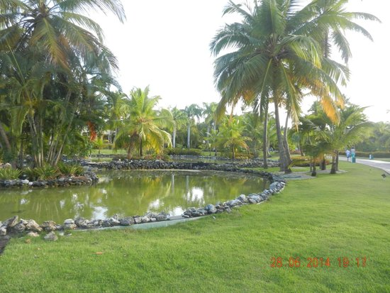 Meliá Caribe Tropical: Parte externa/jardim